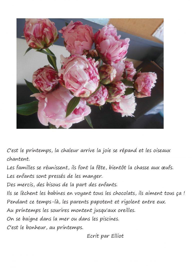 elliot Le printemps (2).pdf